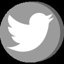 Twitter Grey